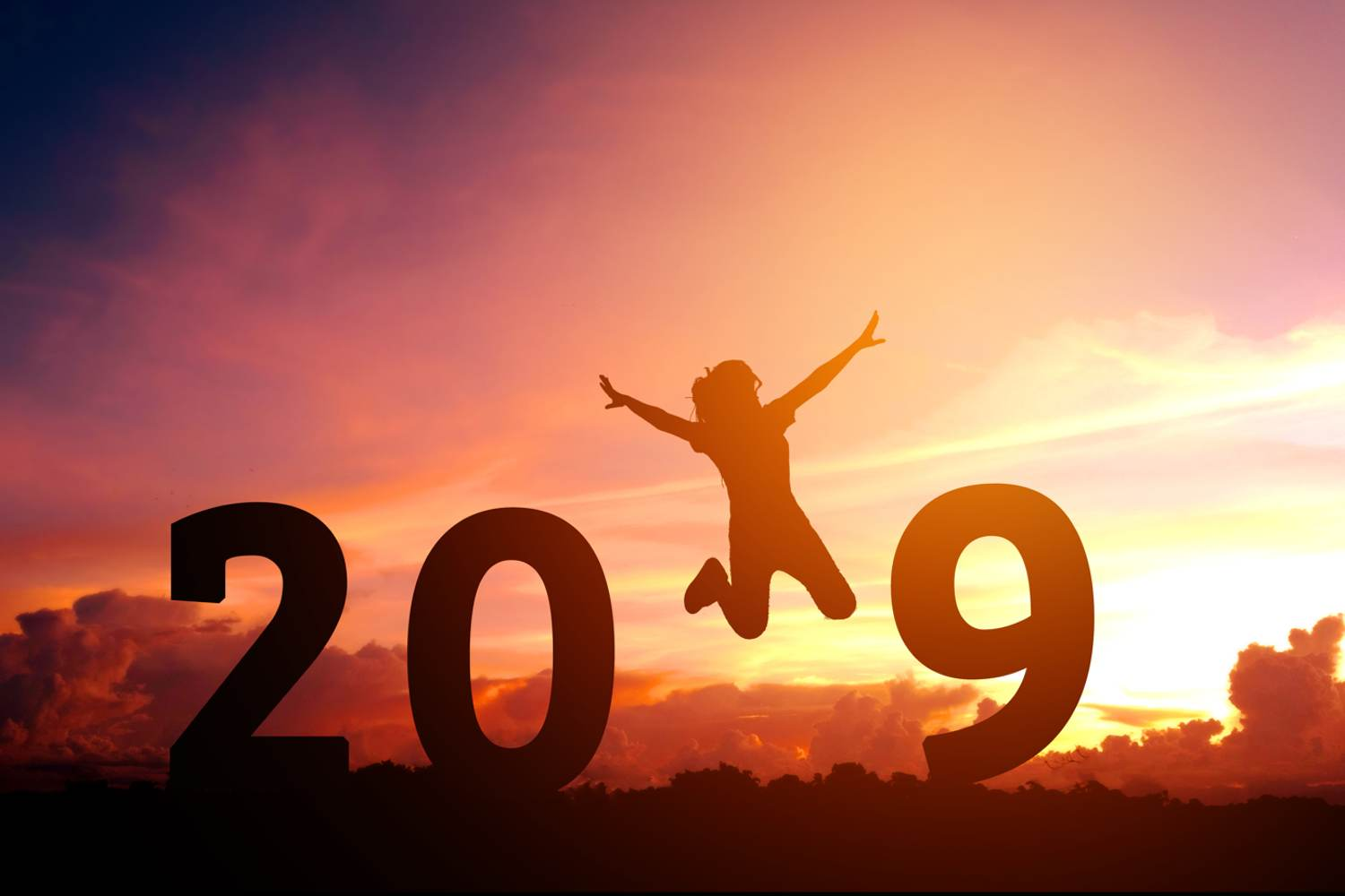 2019 in field with a silhouette of person jumping with joy replacing the 1 at sunset