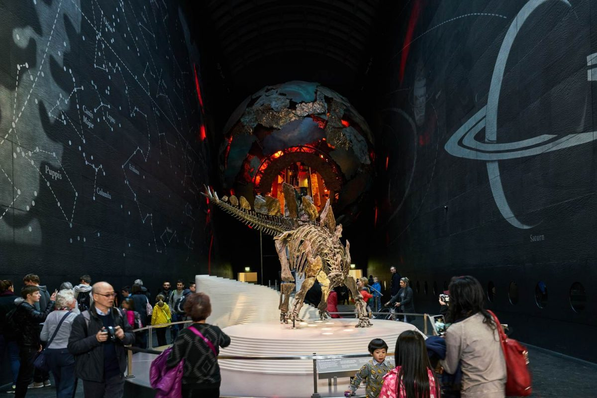 Science Museum dinosaur exhibit in London - Coach transport for school trips