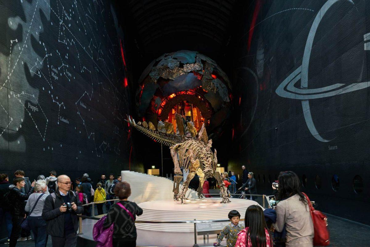 Science Museum dinosaur exhibit in London - Coach transport for school trips