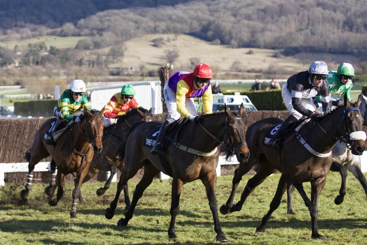 Cheltenham Race in 2010